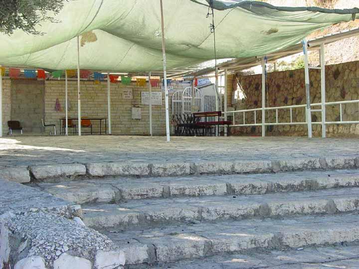 choni-steps